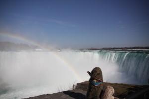 ZeMarmot at Niagara falls